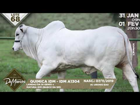 LOTE 68