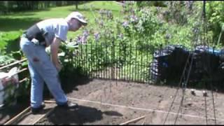 Planting Tom's Favorite Zinnias
