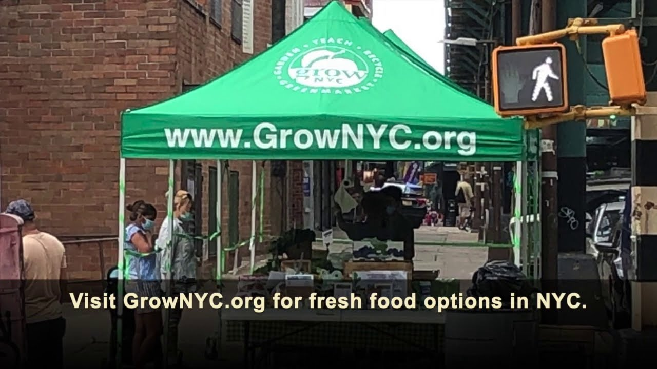 Shopping at Brooklyn Farmstands