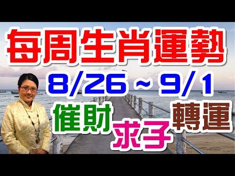 2019生肖運勢週報|08/26-09/01|金玲老師(有字幕)