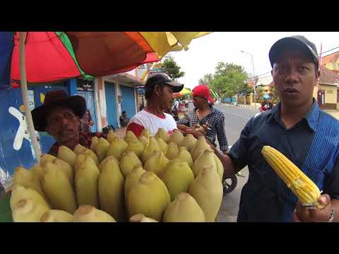 Indonesia Madura Street Food 2900 Part.1 Jagung Rebus Bangkalan YDXJ0256