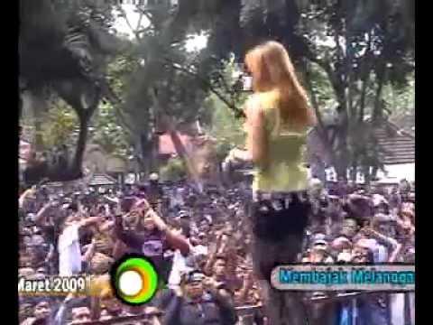 Cinta Sampai Di Sini-Vera Fernanda-RGS by mas elit.flv