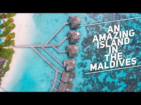 THE AMAZING ISLAND OF KANDOLHU IN THE MALDIVES || Maldives Travel Vlogs - Part 5