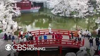 Wuhan residents celebrate, travel after coronavirus lockdown ends