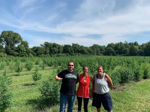 OhioCannabis.com Presents: Ohio Hemp Farm Tour 2020 with Julie Doran of Ohio Hemp Farmers Co-op
