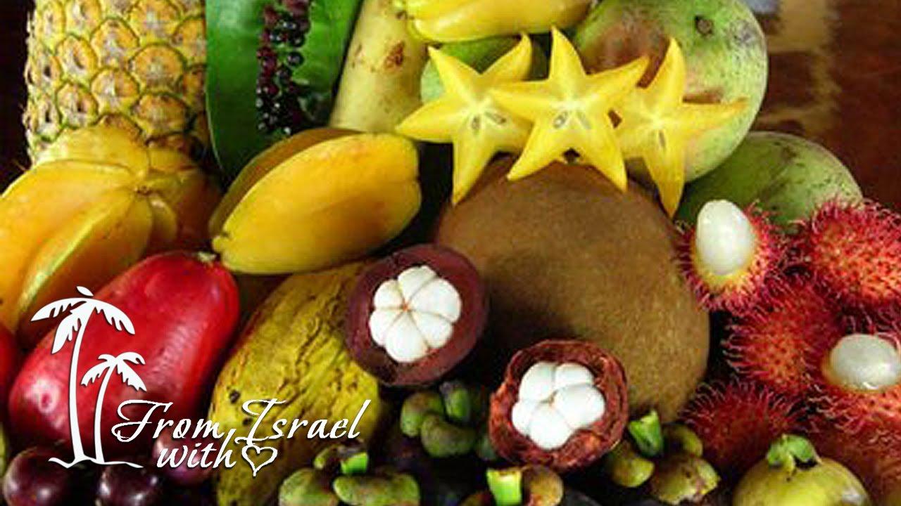 Экзотические фрукты Израиля - YouTube