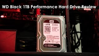 Western Digital Black 1TB Performance Hard Drive Review & Benchmark