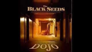 The Black Seeds - Heavy Mono E [HD]