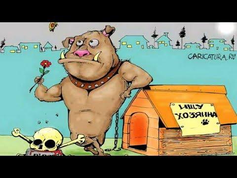 Весёлые картинки и карикатуры про охотников и рыбаков  +18