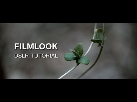 Dslr Tutorial How To Get The Filmlook What Youre Doing Wrong