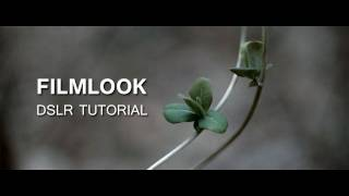 DSLR Tutorial: How to get the Filmlook & what you