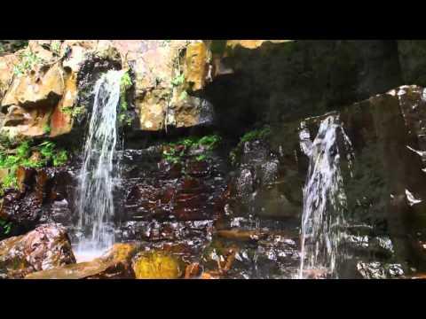 Waterfalls of Andhra Pradesh