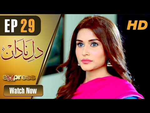 Dil E Nadaan - Episode 29 - Express Entertainment Dramas