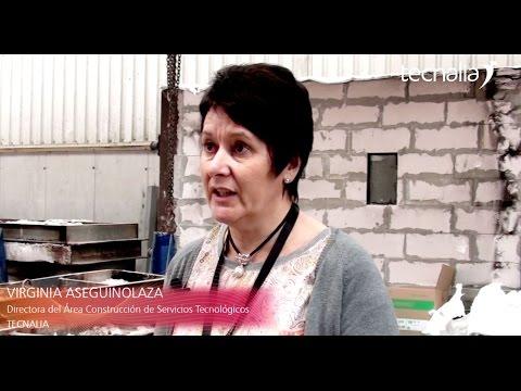 <p>Elkarrizketa: Virginia Aseguinolaza, Industry Lab Services-eko zuzendaria</p>