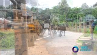 kerala tourism promotion video