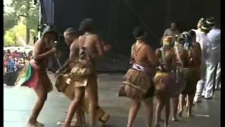 Presidential Inauguration Performance 5 - Mzansi Youth Choir, Phuzekhemisi, Mafikizolo
