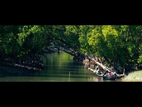 Sundarban Canal Tour Part 1|Sundarban Bangadesh