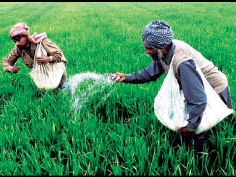 Why Govt Reduces Agricultural Subsidy & Its Effects Exposed by Rajiv Dixit