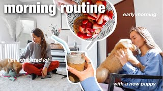 morning routine with my 8 week old puppy!