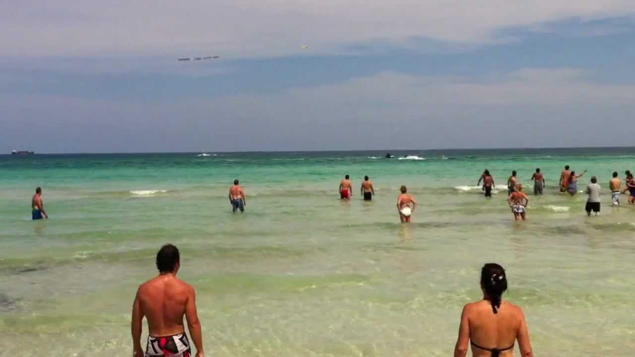 Shark spotted at the beach, Miami Beach