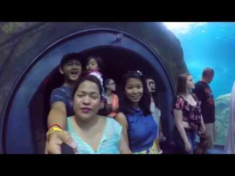GoPro: Day2 Adventure Aquarium Expedition