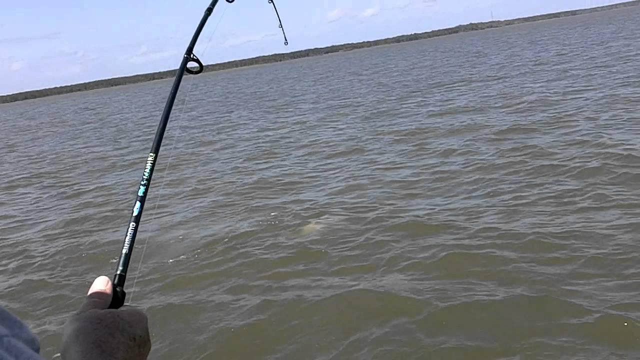 Florida fishing apalachicola bay catching triples mov for Apalachicola fishing report