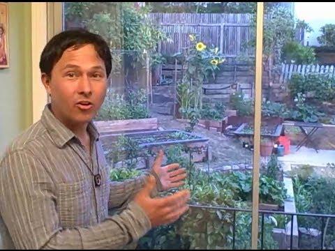 Backyard urban terraced vegetable garden in oakland youtube - Lay outs garden terrace ...