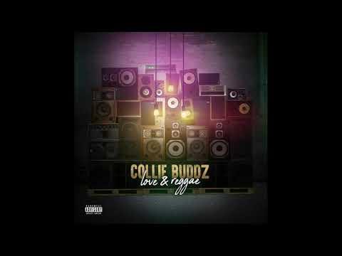 Collie buddz  ( Love & reggae ) lyrics