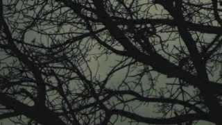 Mikkel Metal - Juirne (Eliyakim remix)