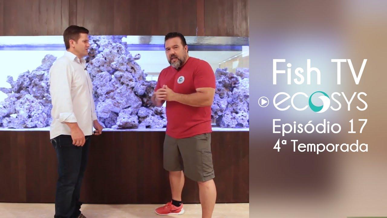 Ecosys e as tecnologias para aquários - 4º temporada -Episódio 17 -Fish TV