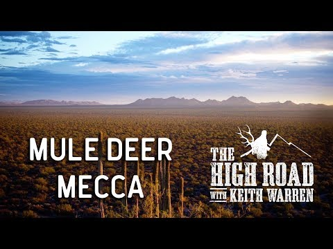 Mexico's Mule Deer Kingdom | The High Road with Keith Warren