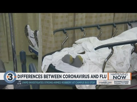 Differences Between Coronavirus And Flu