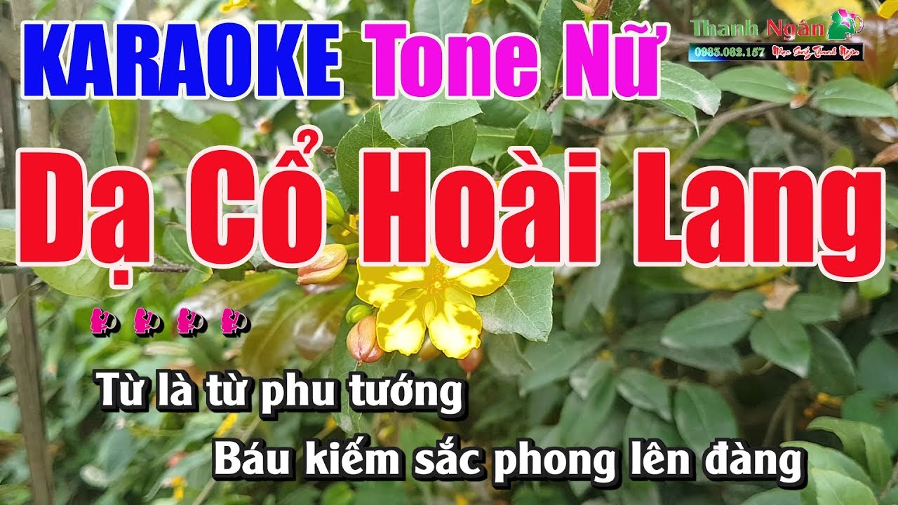 d c ho i lang karaoke tone n nh c s ng thanh ng n. Black Bedroom Furniture Sets. Home Design Ideas