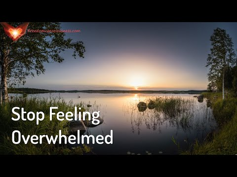 Stop Feeling Overwhelmed Energetic/Frequency Meditation