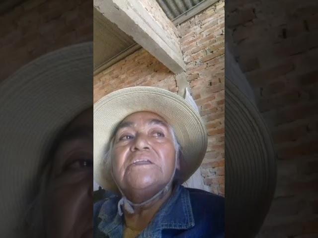 La abuela Pabla Cisnero denunció que le robaron todos su animales vacunos