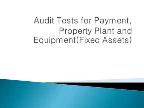 Audit Tests for Payment, Property Plant and Equipment.