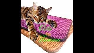 коврик для кошки //ЧИСТЫЕ ЛАПЫ //двухслойный коврик//коврик ловушка //коврик цветной