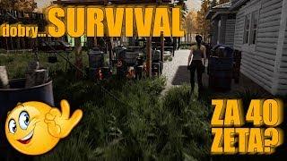 Mist - Dobry survival za 40 zł?