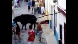Toro mata a hombre brutalmente