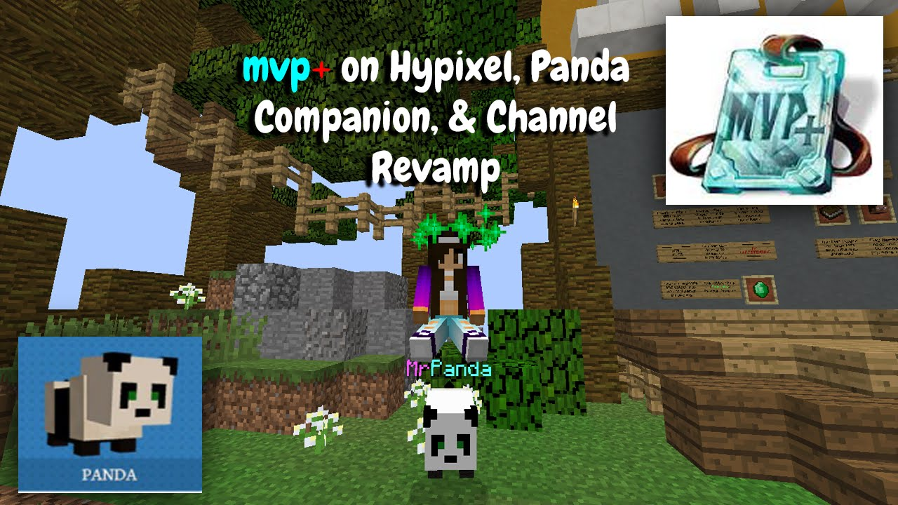 Getting MVP+ On The Hypixel Server, Panda Companion & Channel Revamp (PC  Minecraft)