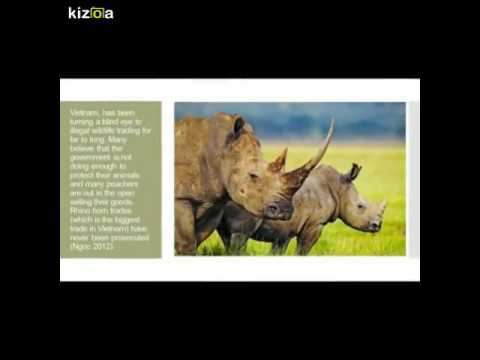 Kizoa Movie - Video - Slideshow Maker: Illegal Wildlife Tading: Smuggling Across the borders
