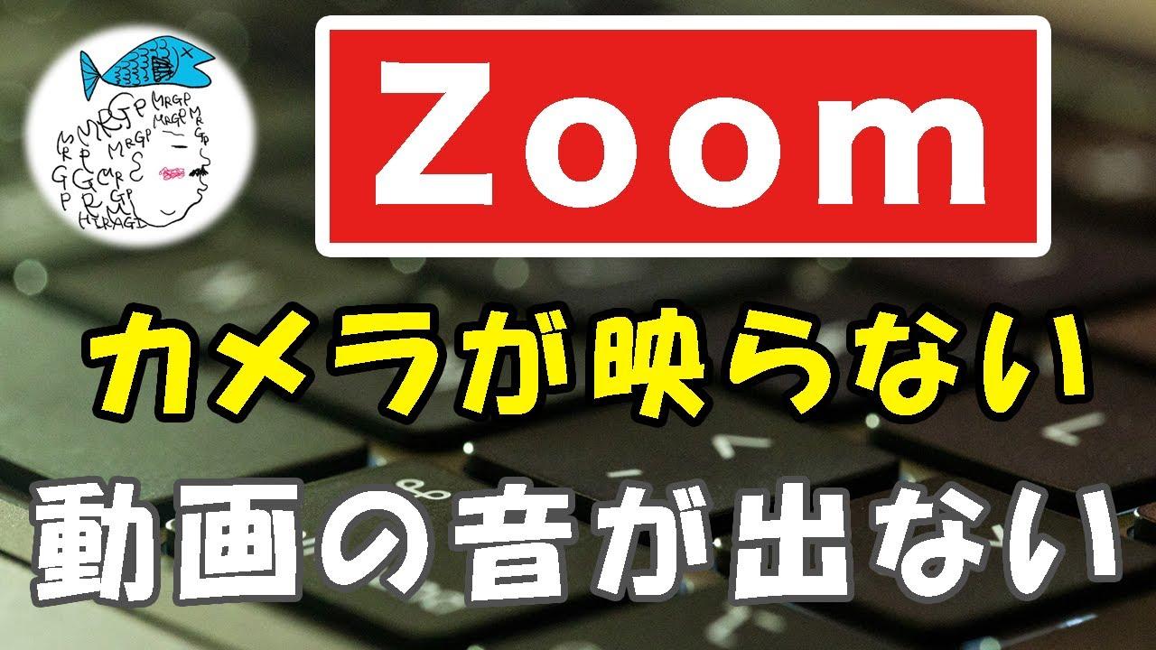 カメラ 映ら ない ズーム Zoomはパソコンのカメラなしでは映らない?カメラ無しでも使える?