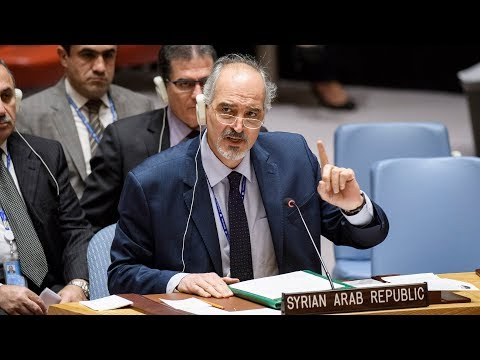 Syria addresses the UN Security Council following ceasefire vote