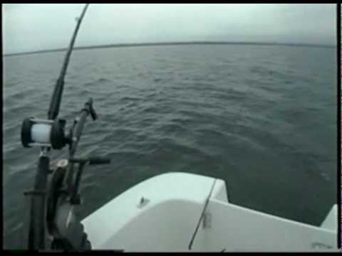 Lake Trout Fishing With Captain Mickey Maynard On Lake Champlain