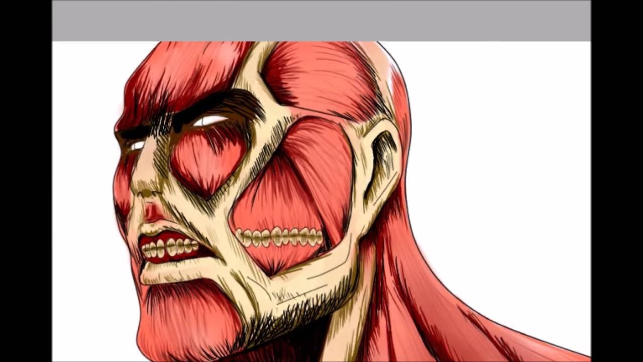 Dibujando A Titan Colosal De Shingeki No Kyojin Speedpaint