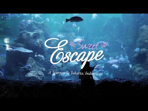 Sweet Escape - A Journey To Jakarta (Short Movie)