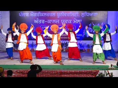 BEST LIVE BHANGRA | ਭੰਗੜਾ | Youth Festival, PAU 2017