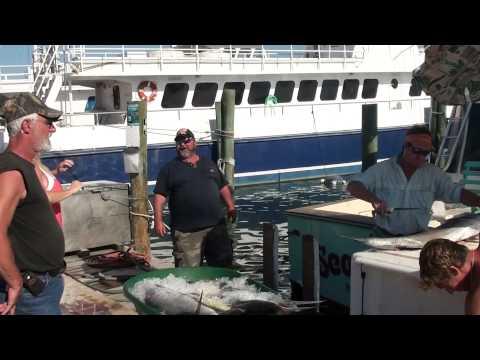 Deep Sea Fishing In Daytona 2010