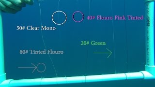 Underwater Test of Fishing Line Colors