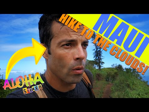 Amazing Maui Hikes | Waihee Ridge Trail - MAUI